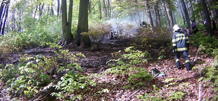 Grant pro jednotky dobrovolných hasičů za zásah na lesních porostech